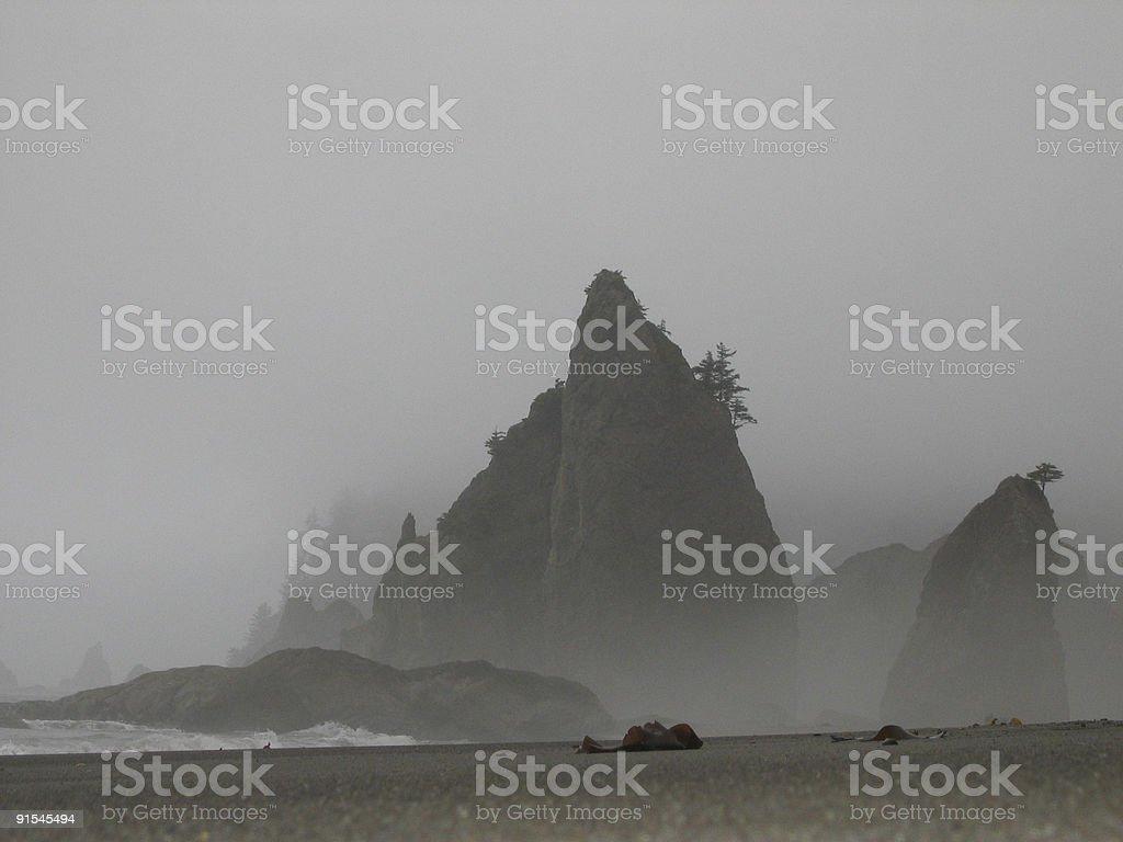 Misty Beach royalty-free stock photo