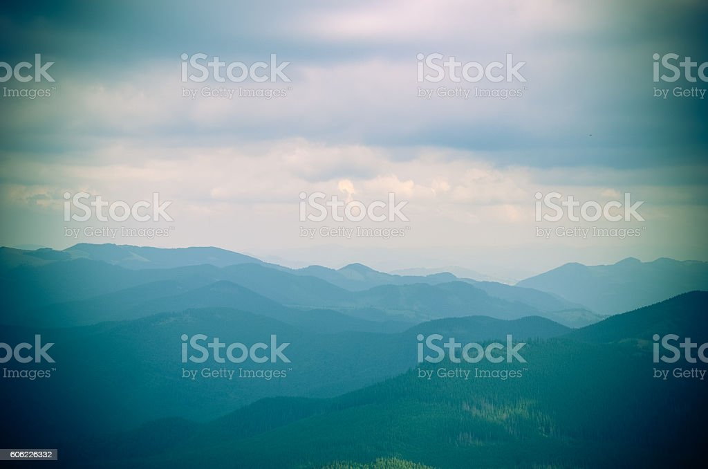 Misty beech forest on the mountain slope in nature reserve stock photo