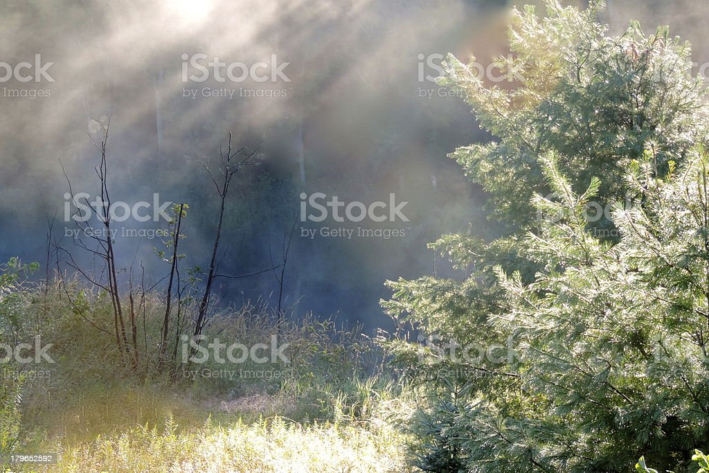 Misty Blues stock photo