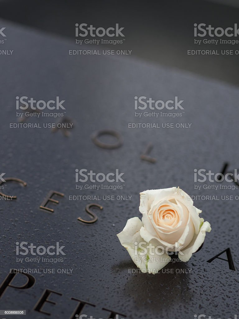 Misty blurred view of the 9/11 Memorial and memorial rose stock photo