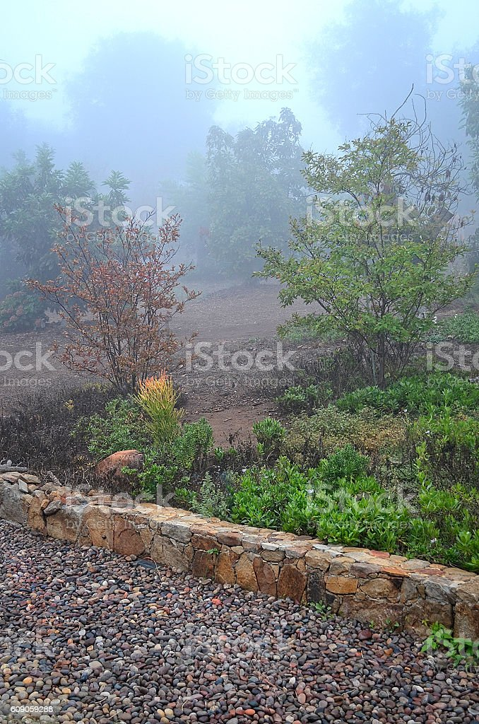 Misty California Succulent Garden Stone Wall stock photo