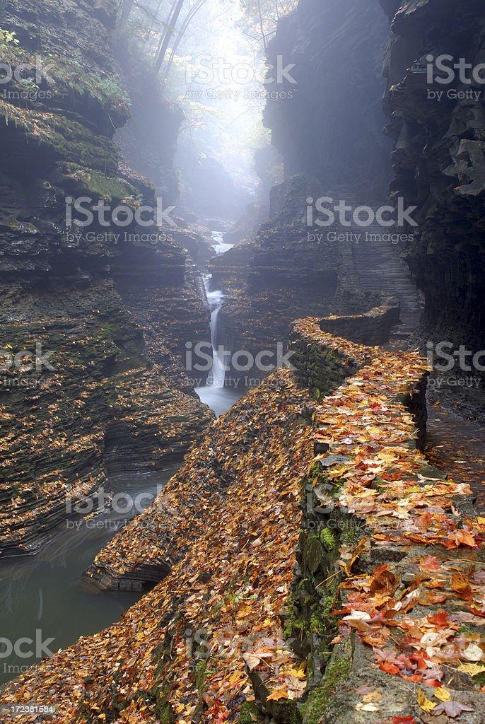 Misty Cascade in Watkins Glen royalty-free stock photo