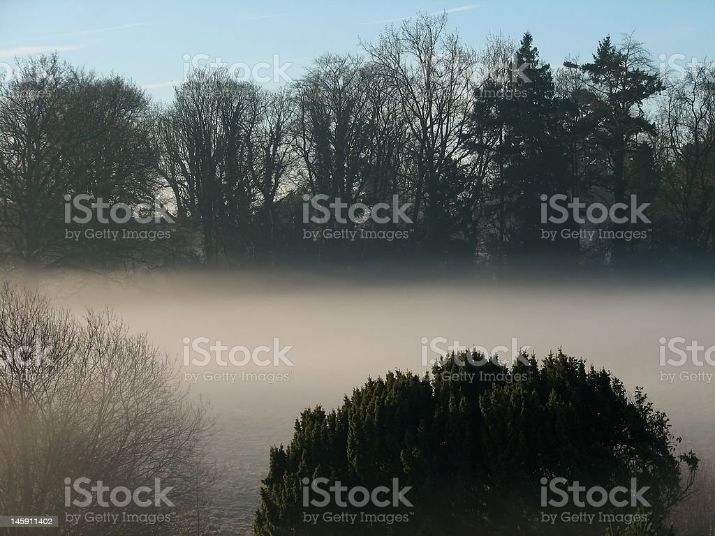 Misty Day in the Country stock photo