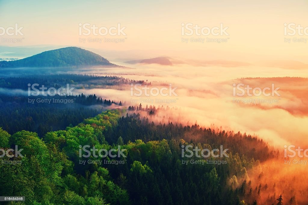 Misty daybreak in beautiful hills. Hills peaks in foggy background stock photo