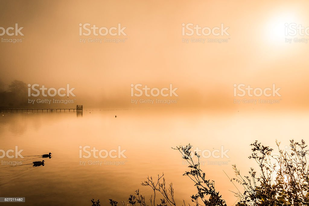 Misty early morning lake in autumn stock photo