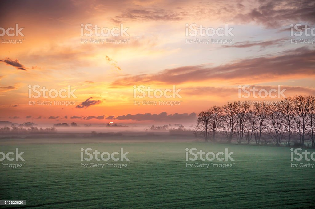 Misty field at first light stock photo