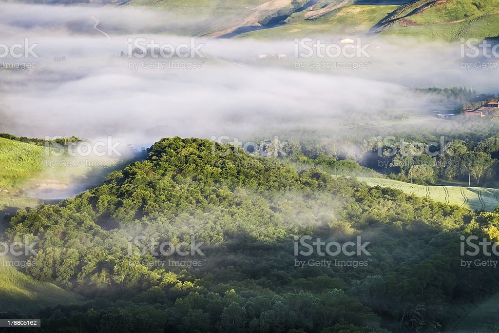 Misty forest hill in Tuscany royalty-free stock photo