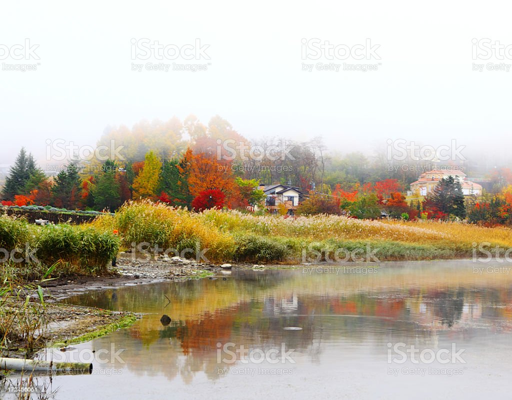 Misty lake in fall royalty-free stock photo