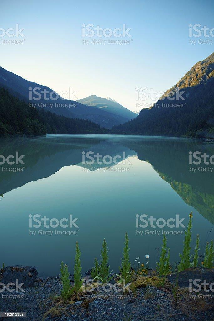 Misty Lake Reflection stock photo