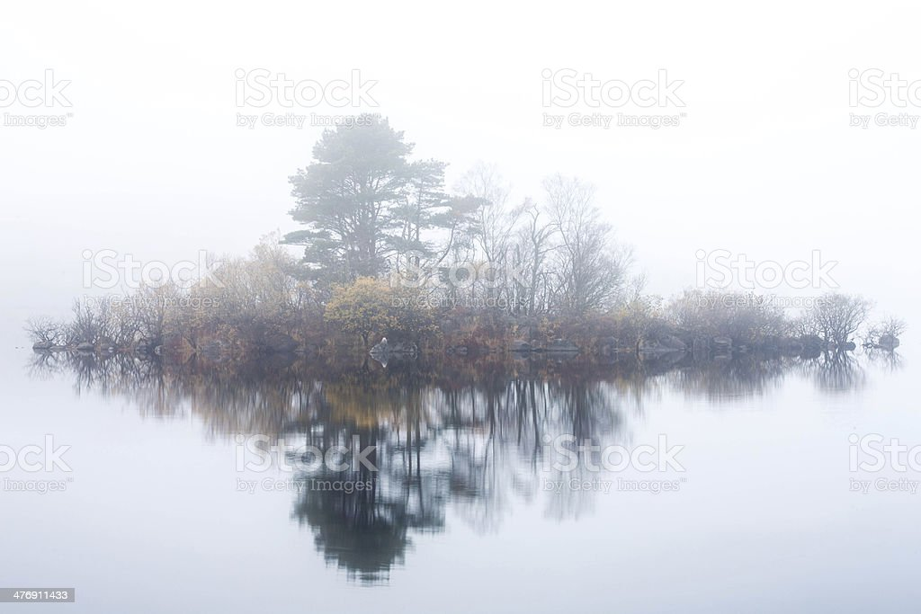 Misty lake scene royalty-free stock photo