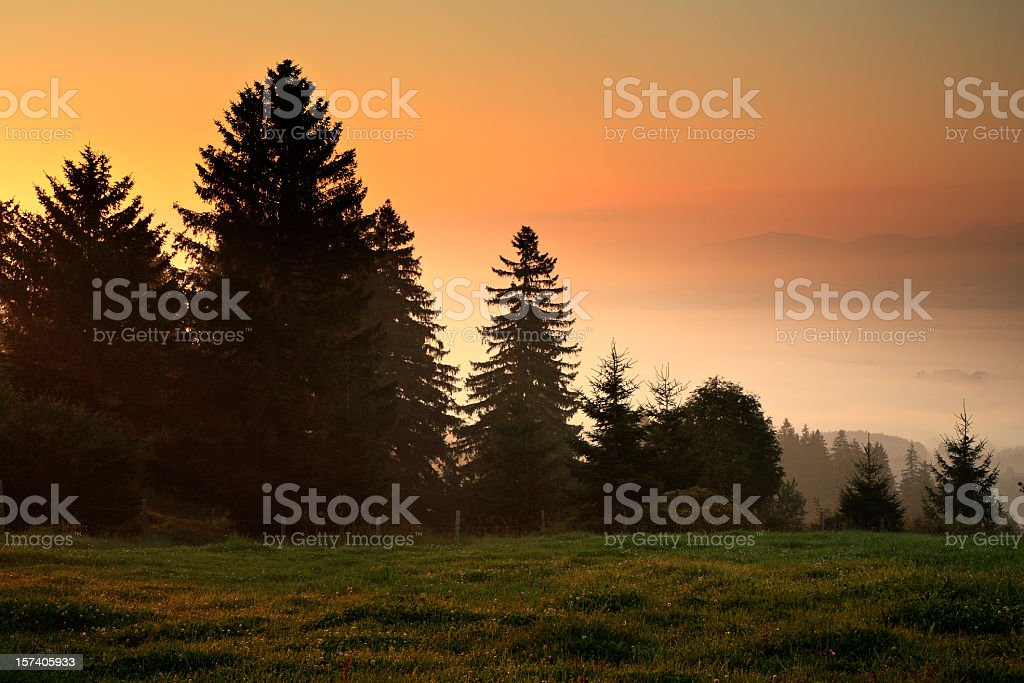 Misty Landscape at Dawn royalty-free stock photo