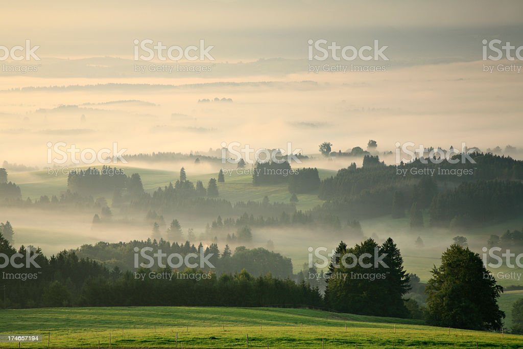 Misty Landscape at Dawn stock photo