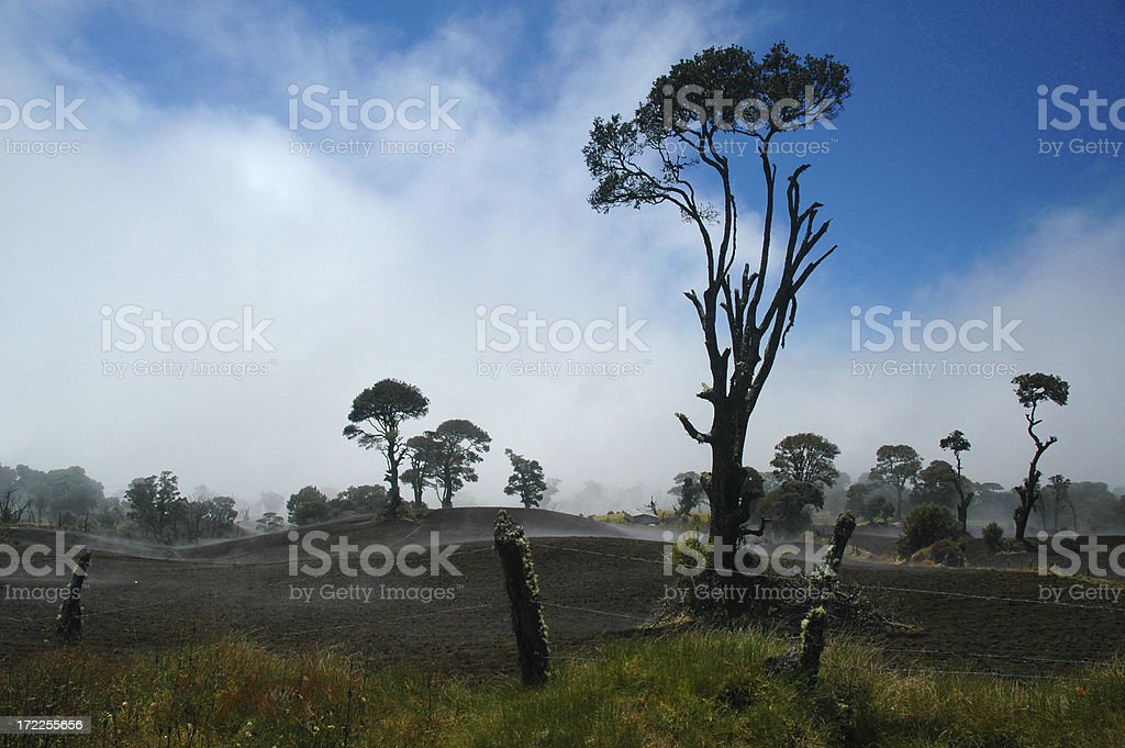 Misty Landscape royalty-free stock photo