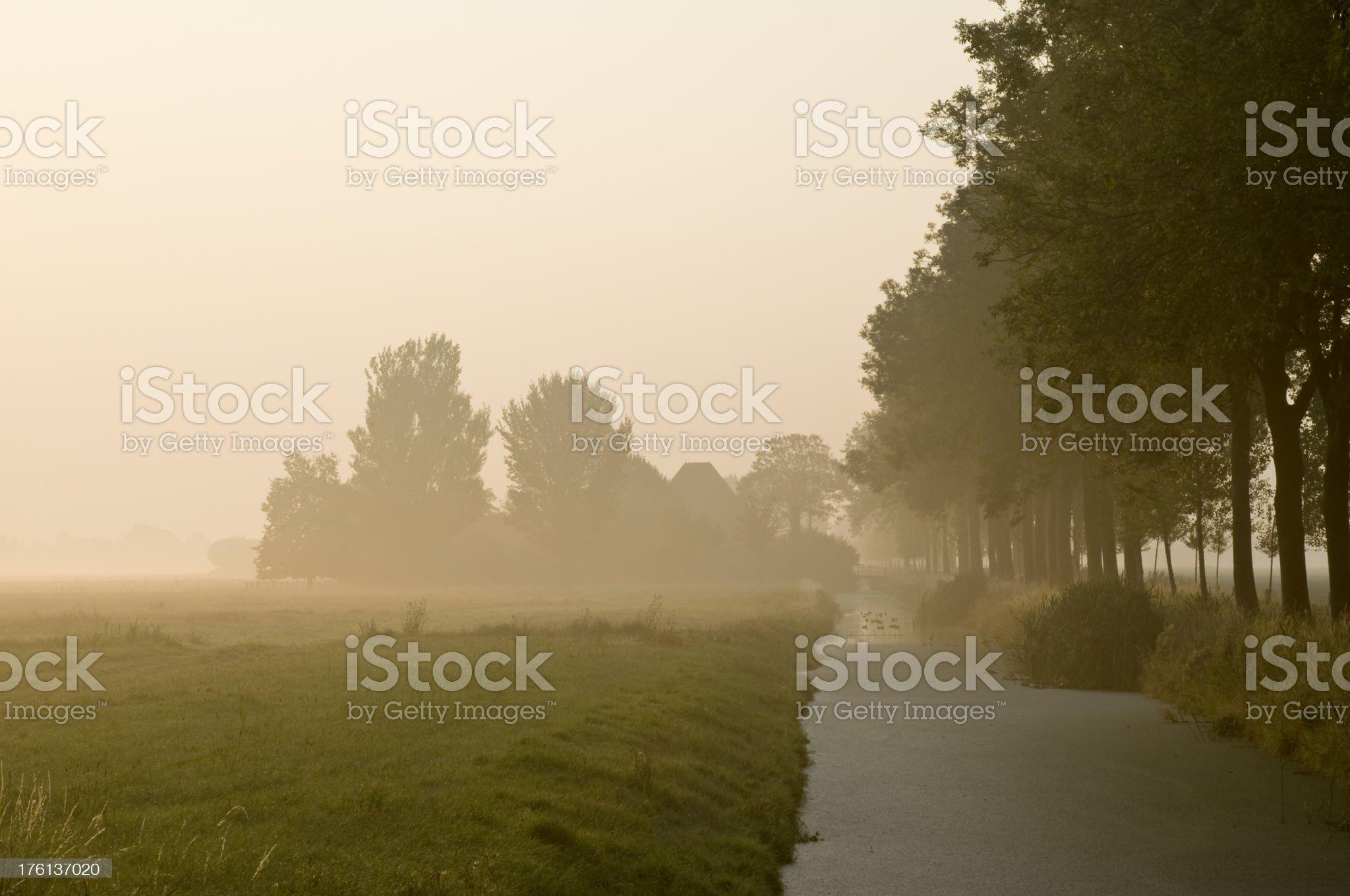 Misty Landscape royalty-free stock photo