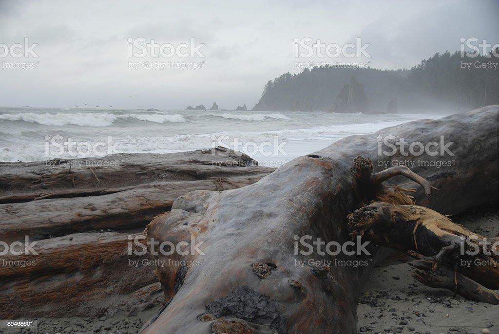 Misty Light on Rialto Shore stock photo