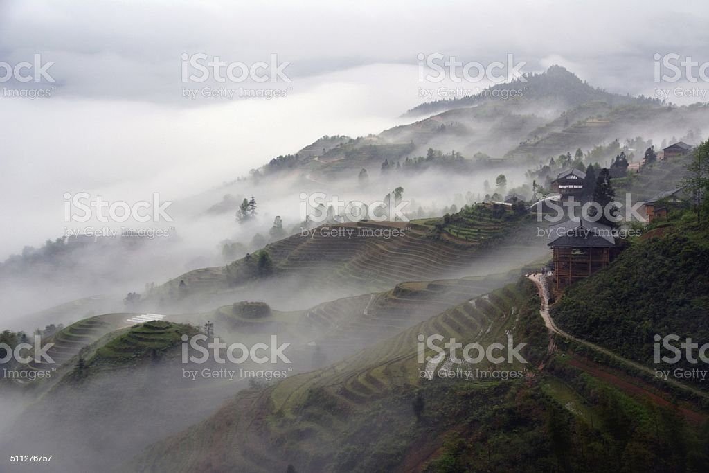 Misty Longsheng Rice Terraces, Guangxi region China stock photo