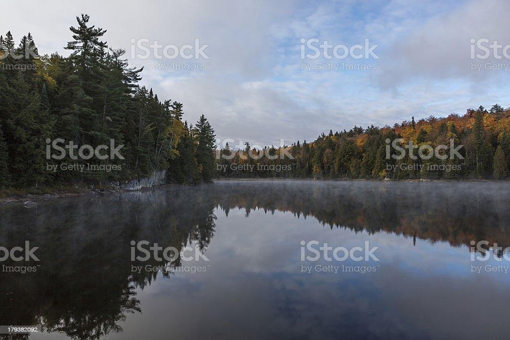 Nebligen Morgen, Algonquin Park Lizenzfreies stock-foto