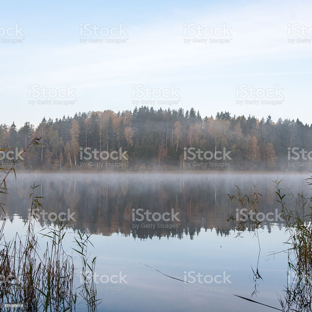 misty morning at the lake in country stock photo