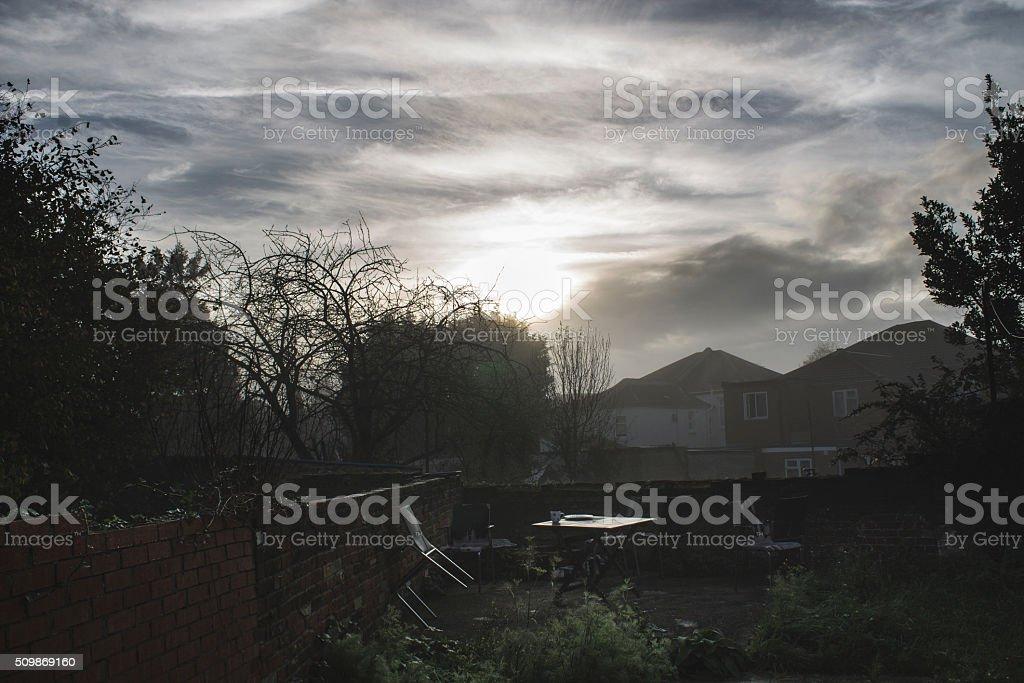 Misty Morning Garden stock photo