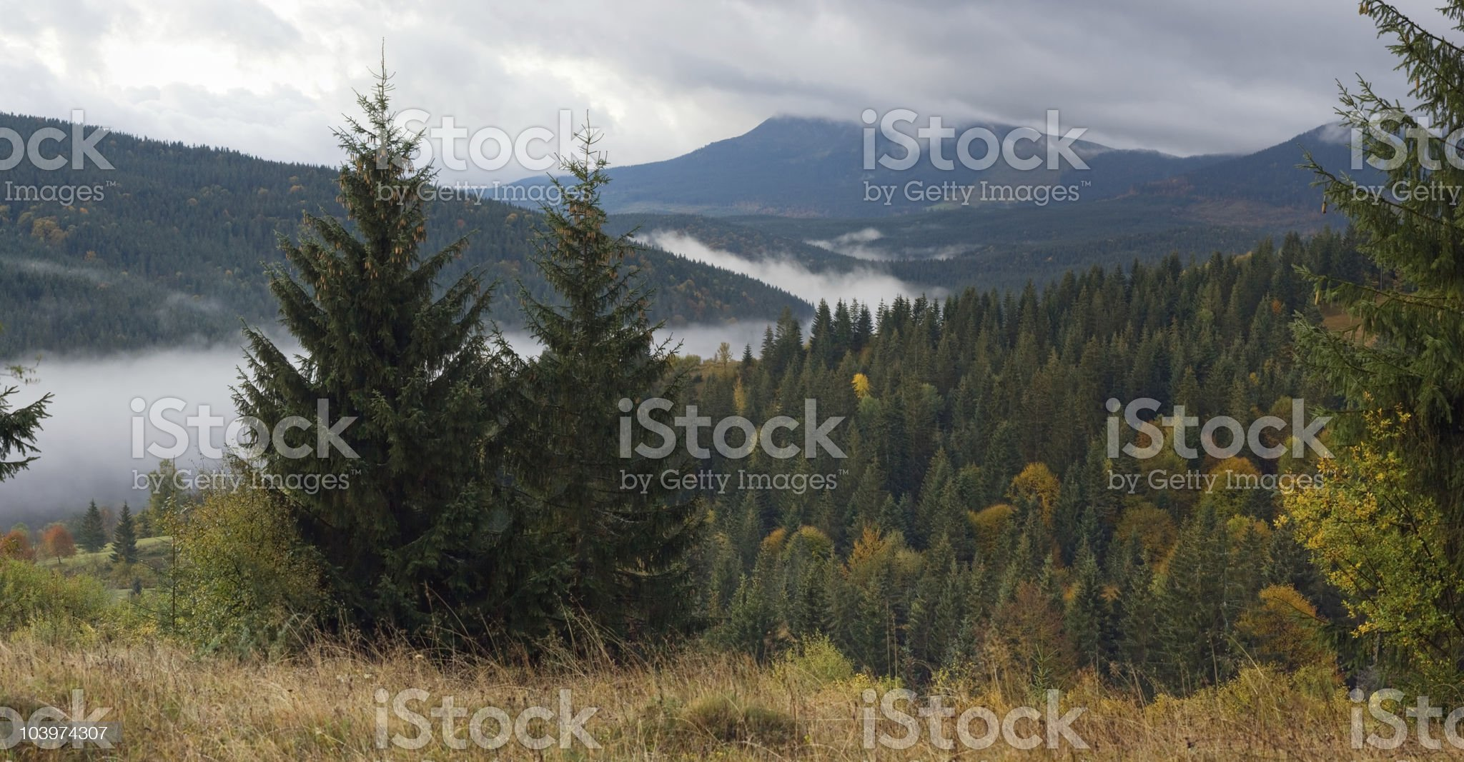 Misty morning in mountain royalty-free stock photo
