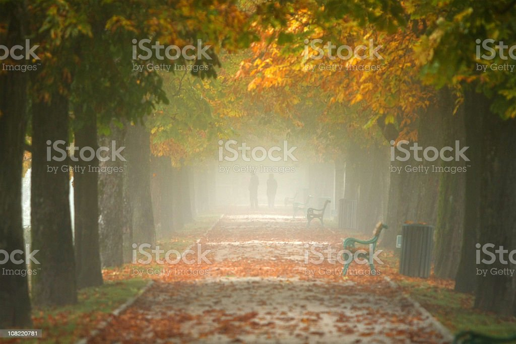 Misty Morning in Park,Autumn royalty-free stock photo