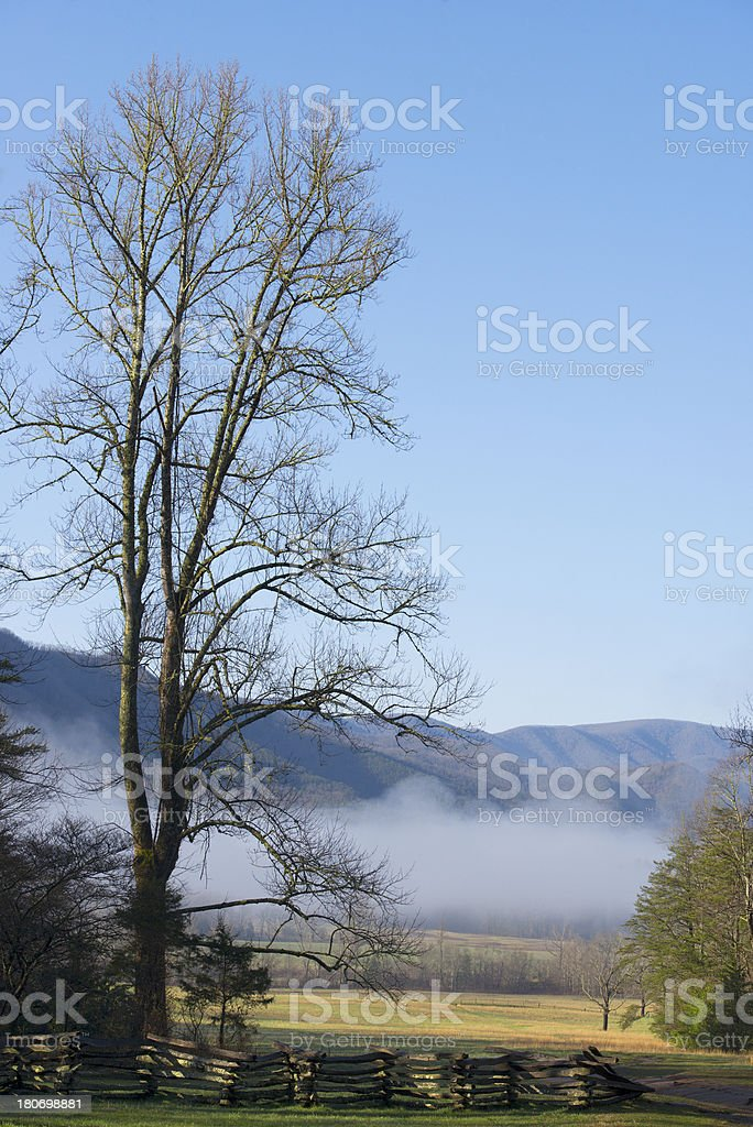 Misty morning in smoky mountains royalty-free stock photo