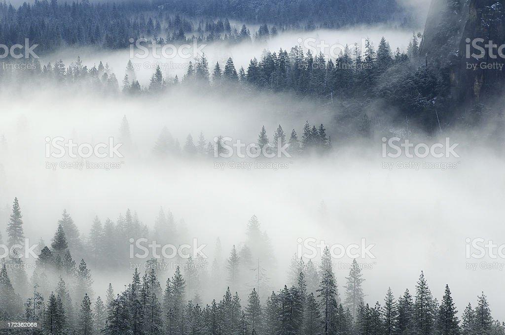 Misty morning in Yosemity Valley royalty-free stock photo