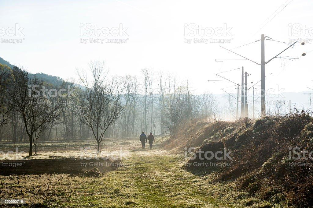 Misty morning of spring stock photo