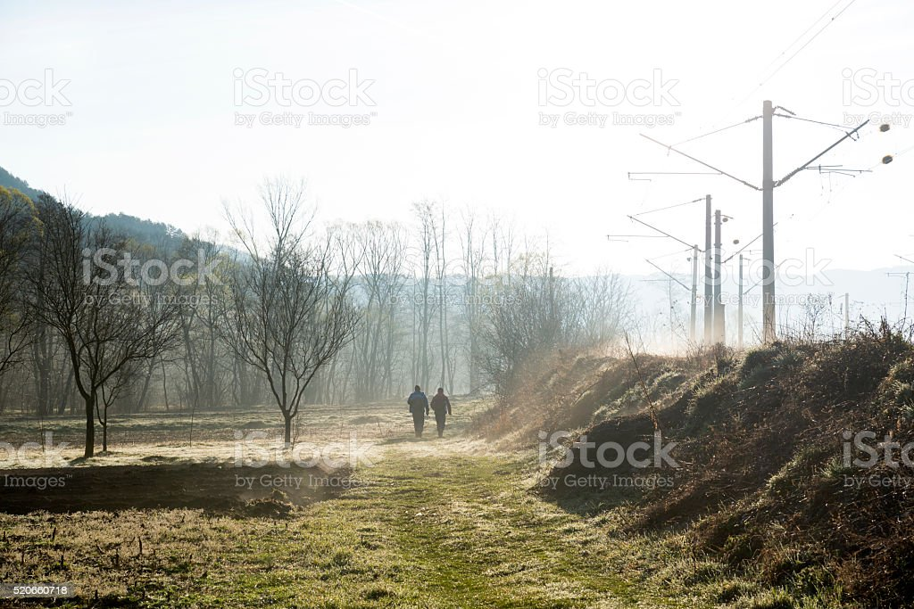 Misty morning of spring stock photo