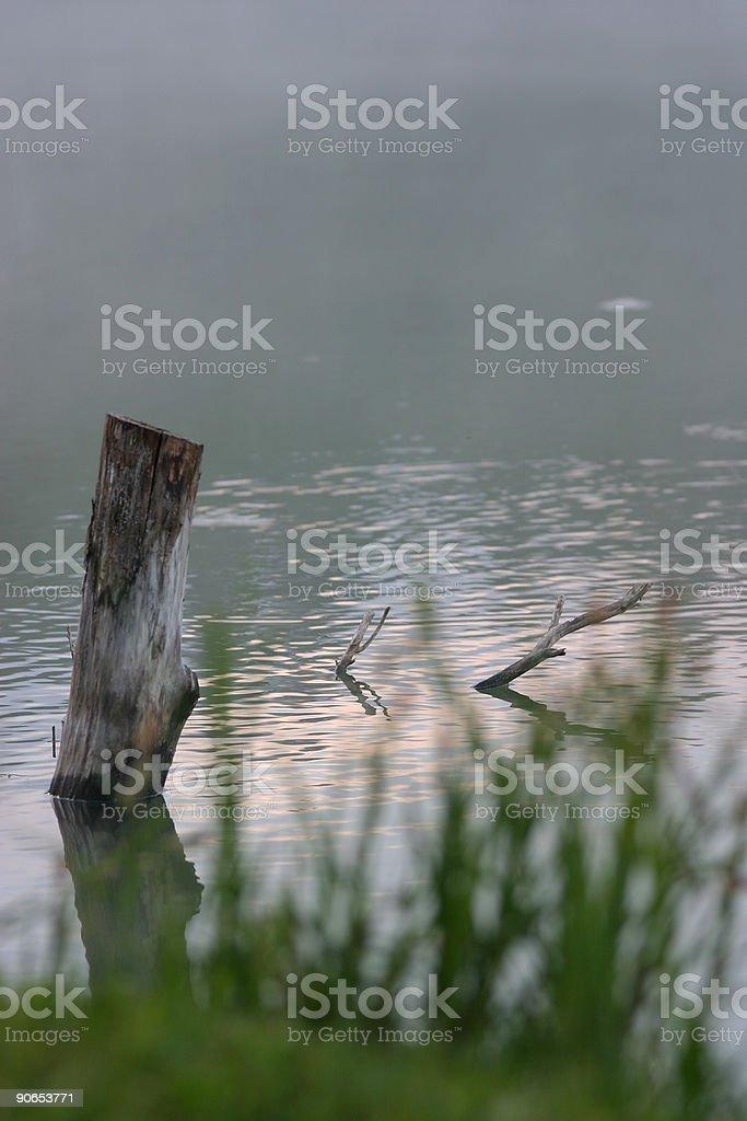 Misty morning on lake royalty-free stock photo