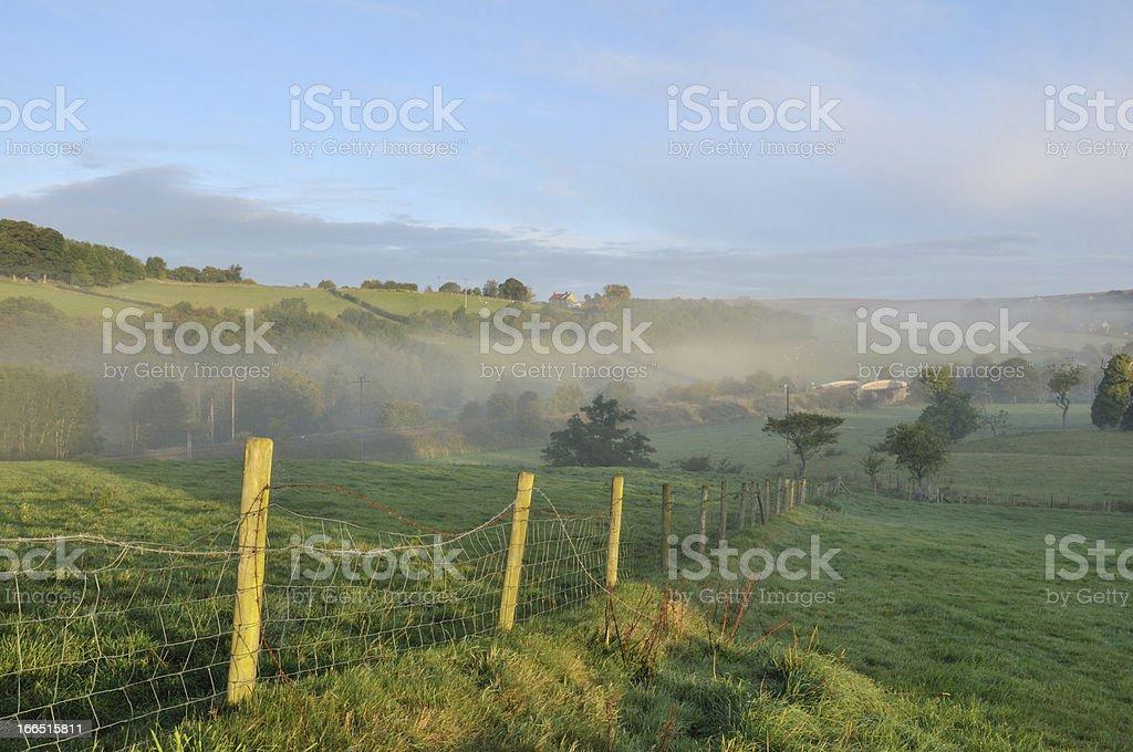 Misty morning. stock photo