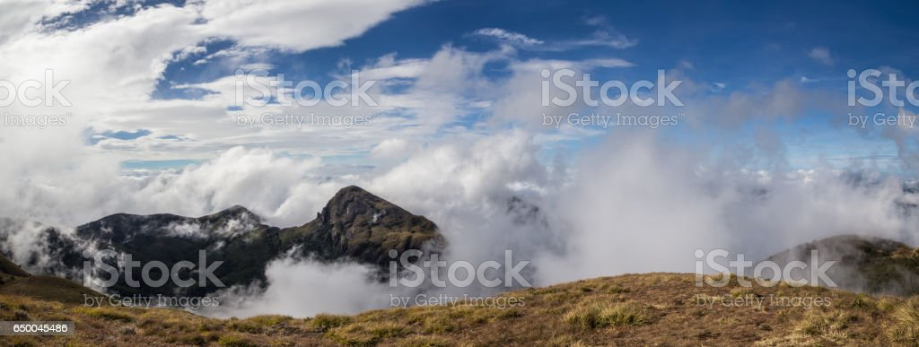 Misty mountain, Meesapulimala, Kerala stock photo
