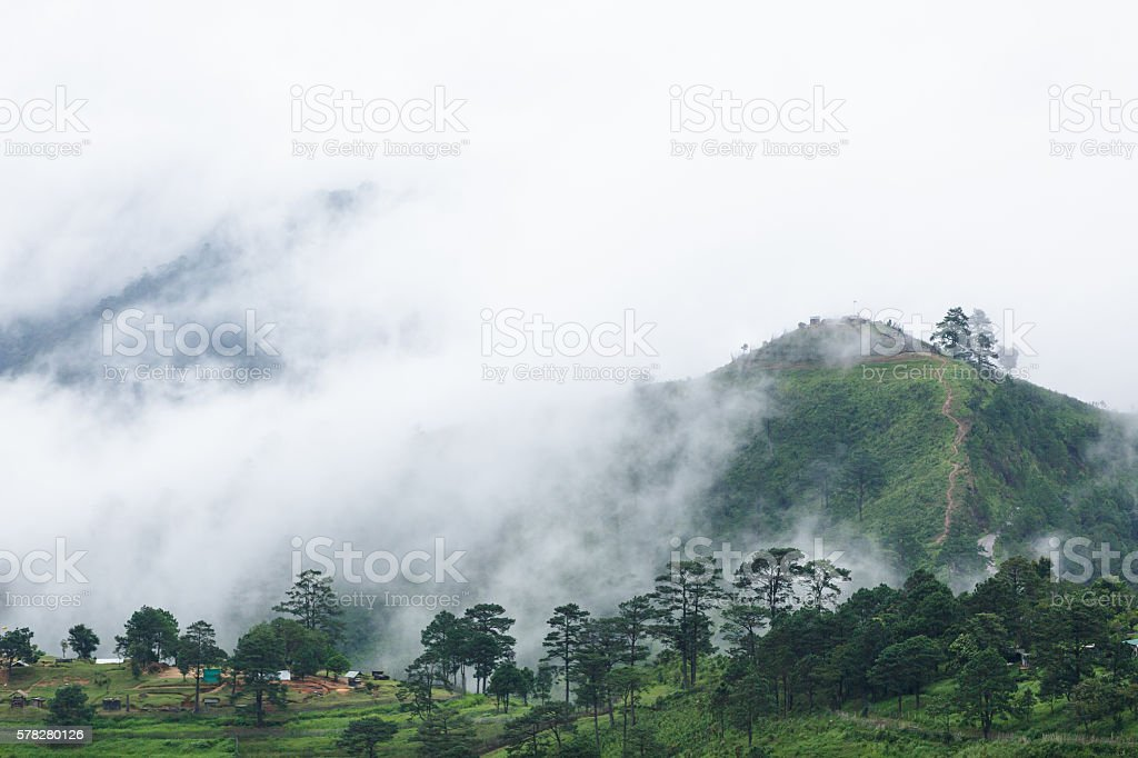 Misty Mountain Morning stock photo