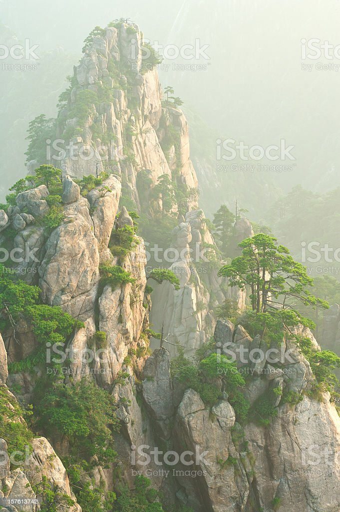 Misty mountain peak and Huangshan Pines royalty-free stock photo