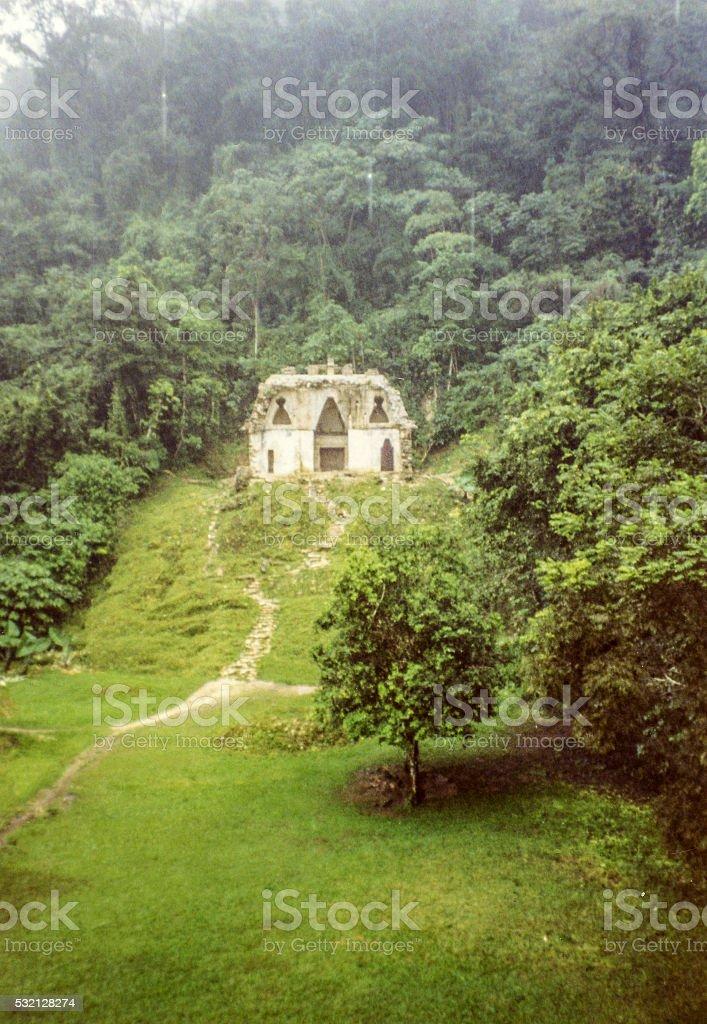 Misty Palenque stock photo