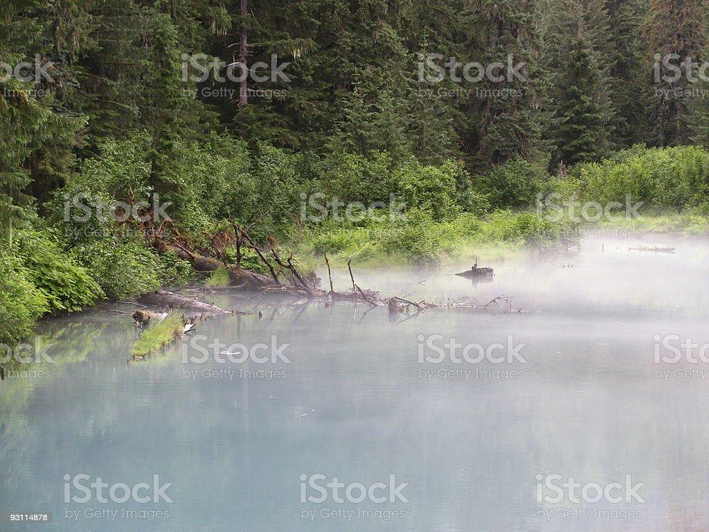 Misty Pond in Southeast Alaska stock photo