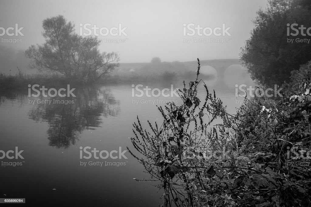 Misty river at dawn stock photo