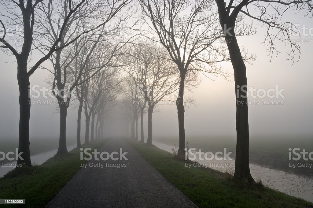 Misty Road royalty-free stock photo