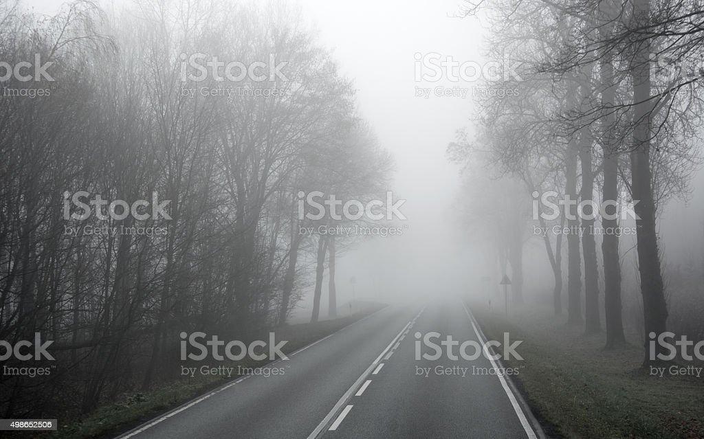 Misty road foto de stock libre de derechos