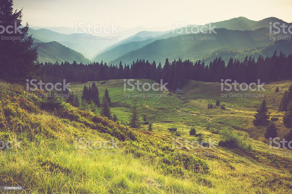 Misty summer mountain hills landscape. stock photo
