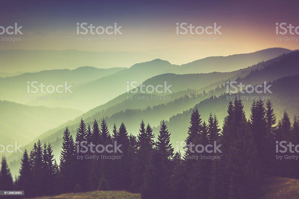 Misty summer mountain hills landscape. stock photo