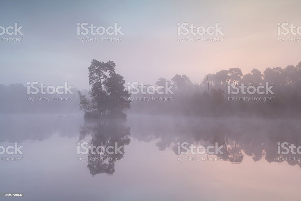 misty sunrise on wild lake stock photo