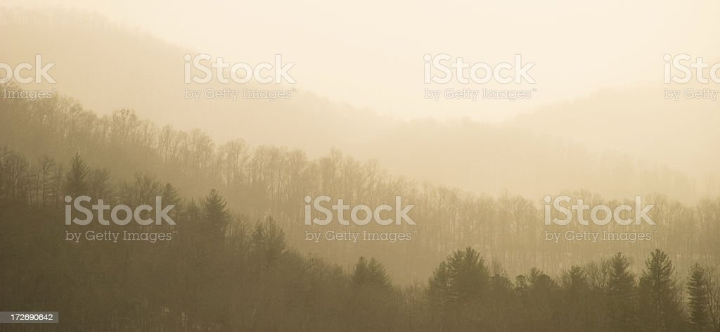 Misty Sunrise stock photo