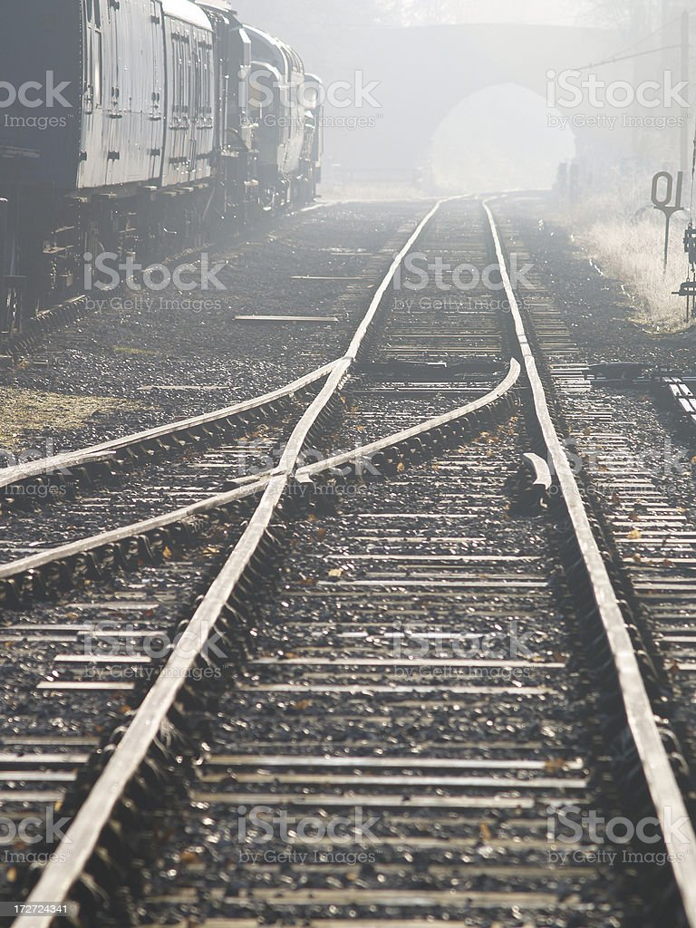 Misty Track royalty-free stock photo