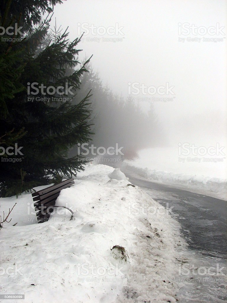 Misty winter in park. royalty-free stock photo