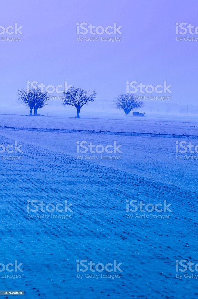 Misty winter landscape stock photo
