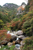 Mitake Shosenkyo gorges and Kakuenbo with red autumn leaves