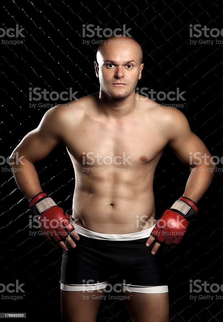 Mix Martial Arts Fighter royalty-free stock photo