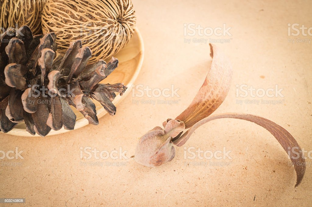 Mix of dried plant ornament on wooden background stock photo