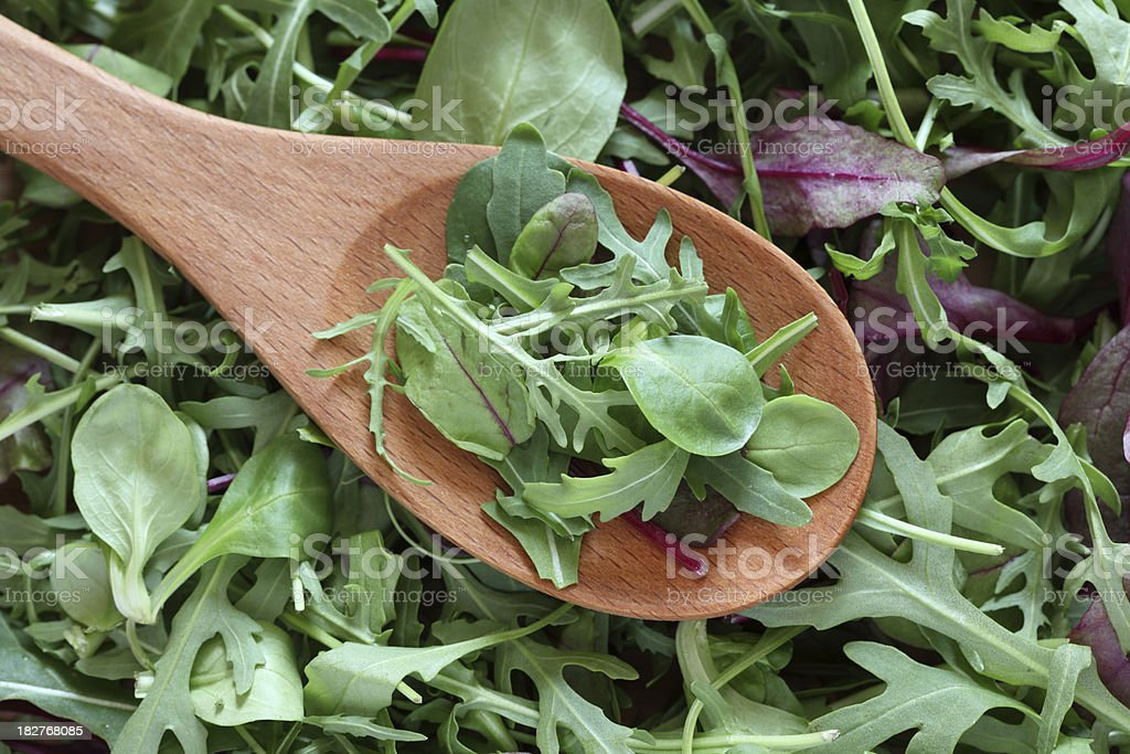 Mix of green salads in a wooden spoon stock photo